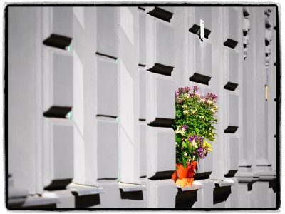 Interim_Management_Blog_Foto_Juergen_Becker_Fassade_mit_Blumen_Berlin_2017